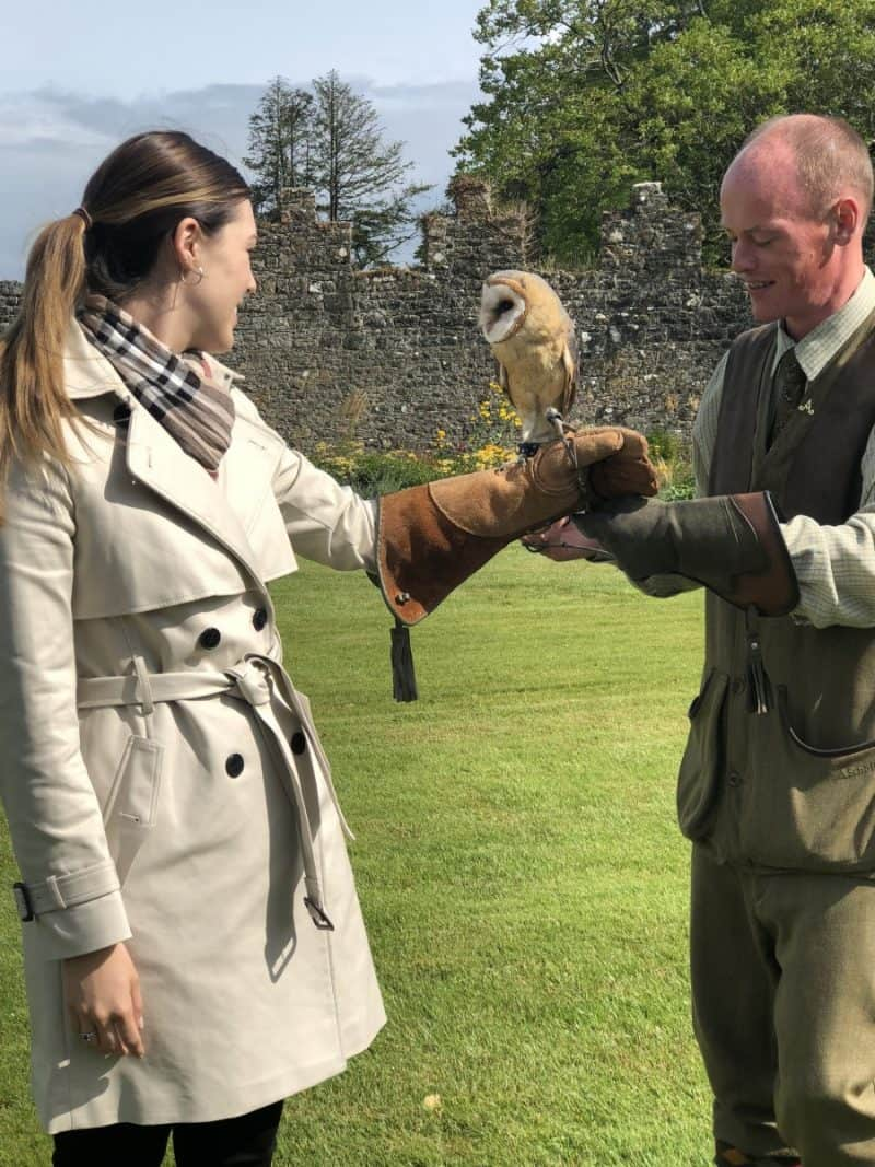 | London and Ireland Itinerary featured by popular Dallas travel blogger, Never Without Lipstick: falconry at Adare Manor